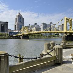 Woman Walks Dog on the Riverfront