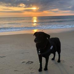 Sunrise with Schooner