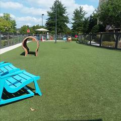 Stony Point Fashion Park - Dog Park