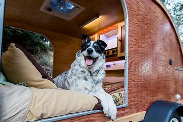 Pet Friendly Outdoorsy RV Rental Kernville