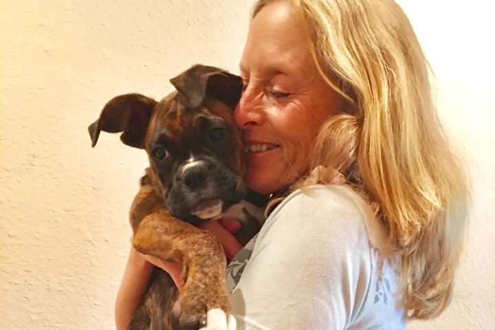 Pet Friendly Now and Zen