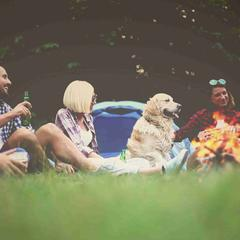 Friends and Dog Sit Around a Campfire
