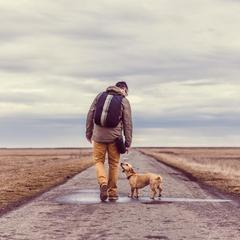 Man Walks a Dog on a Secluded Road