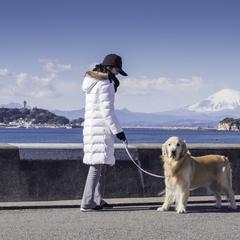 Woman Walks a Dog Along the Sea