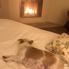 Winter trip - warm room!