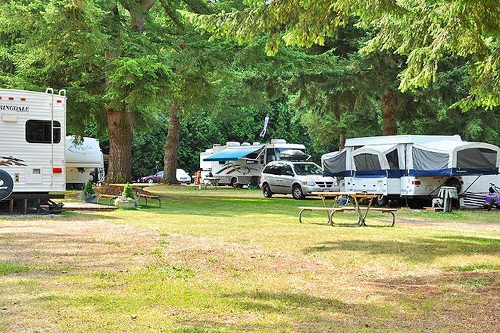 Pet Friendly Birch Bay RV Campground