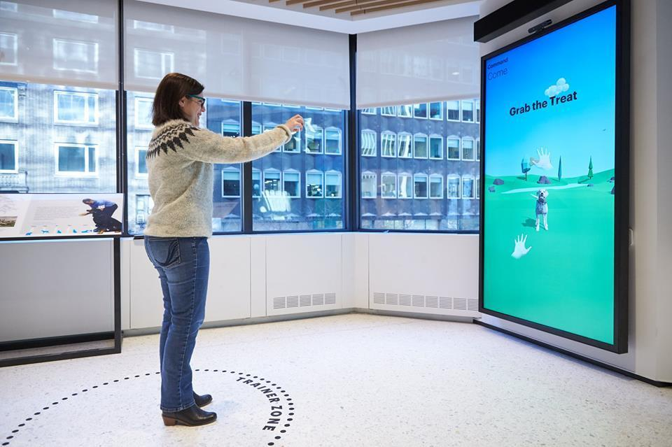 Become a virtual dog trainer at the Museum of the Dog!