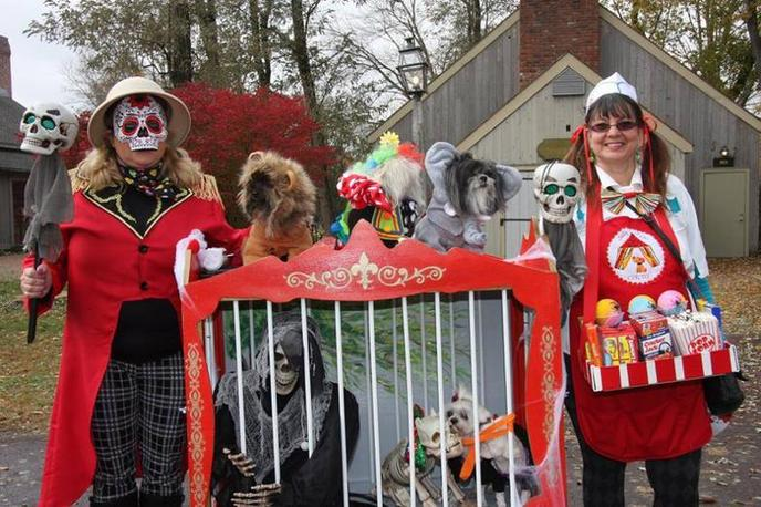 The Dog Walk of the Dead is a dog event that promises a spooky good time for all!