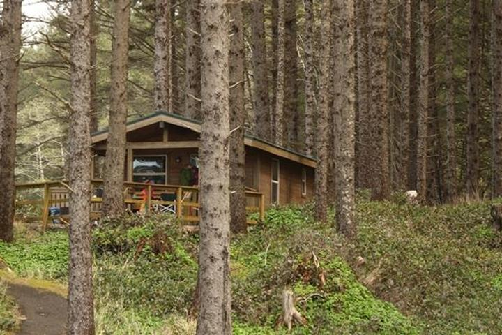 Pet Friendly Cape Lookout State Park Campground