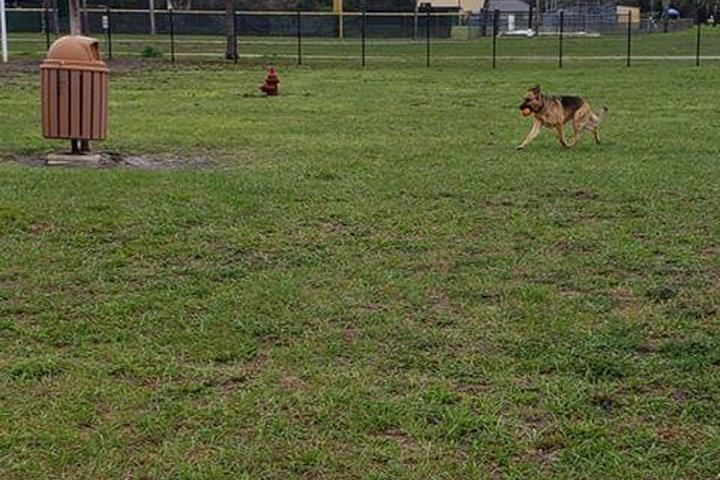 Pet Friendly Leesburg Dog Park