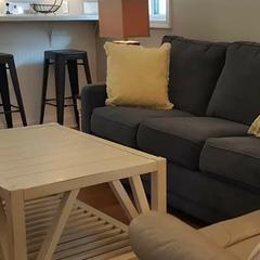 Doggie Suite Living Room
