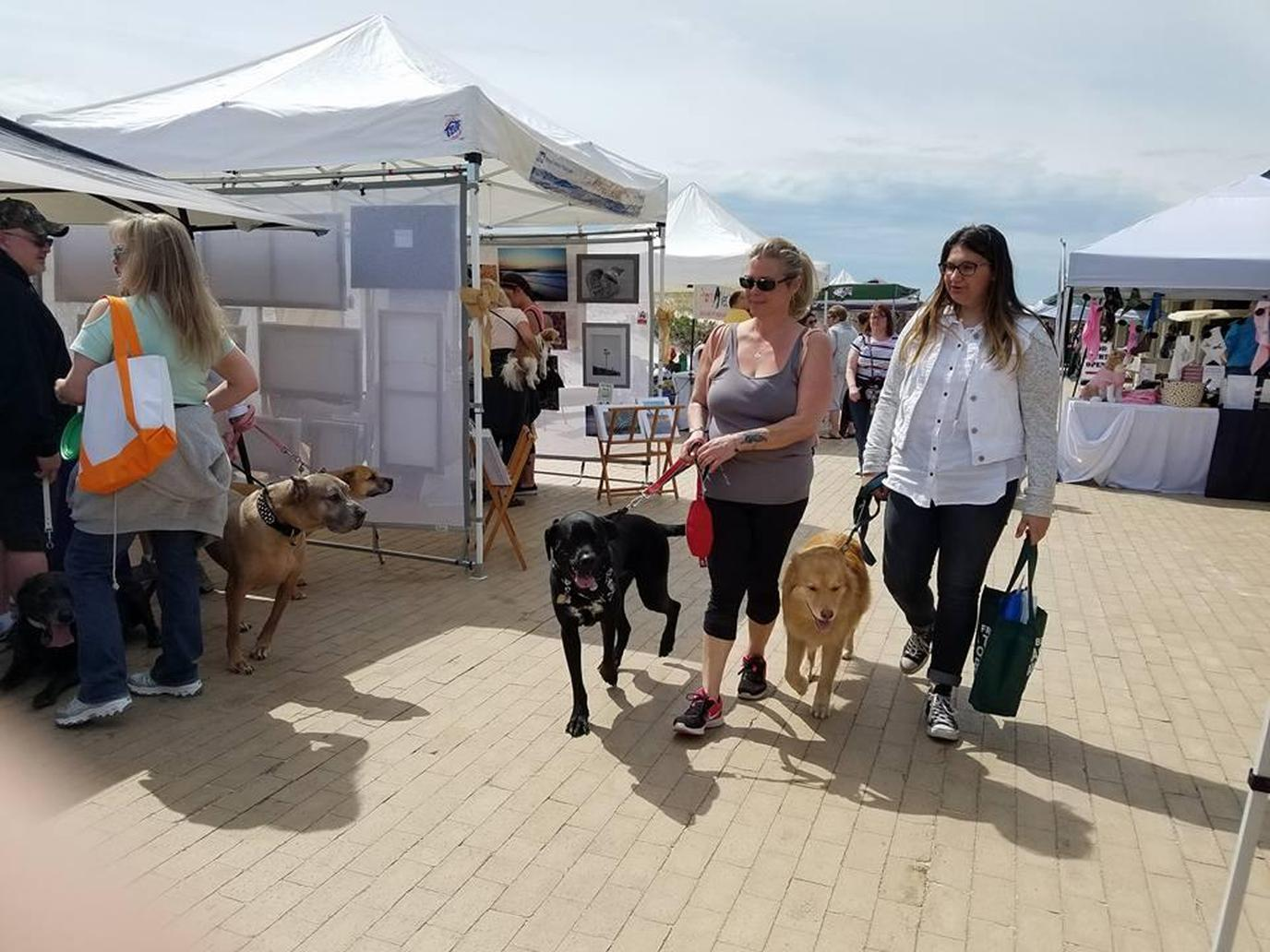 The May Day pet-friendly festival and expo takes place right on the beach.