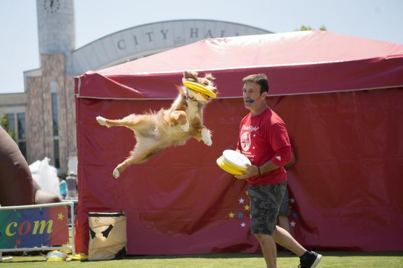 Woofstock is one of Atlanta's largest pet-friendly festivals.