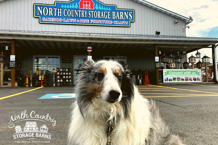 Pet Friendly North Country Storage Barns
