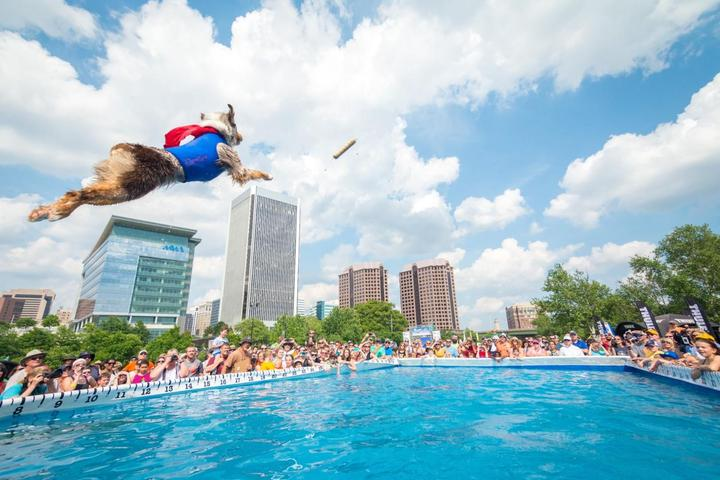 Dock jumping dogs are part of the fun at Dominion Energy Riverrock.