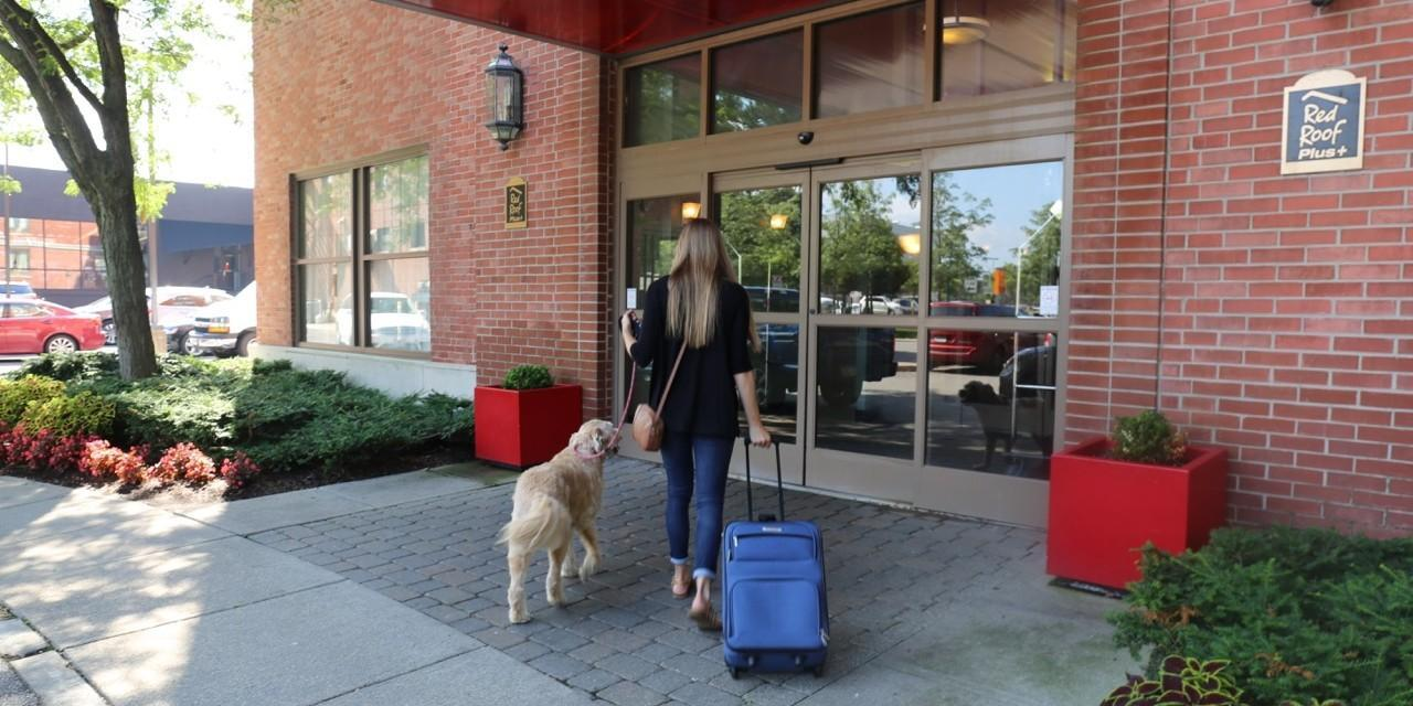 Learn all about Red Roof Inn's Pet Policy.