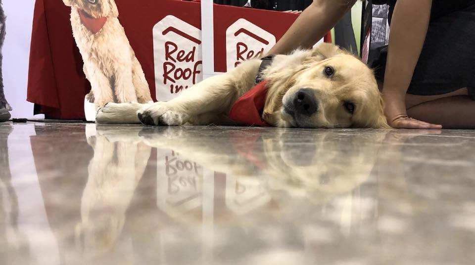 Customer at Red Roof Inn