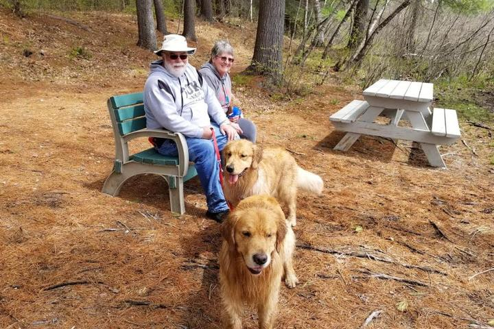 Pet Friendly Chocorua KOA