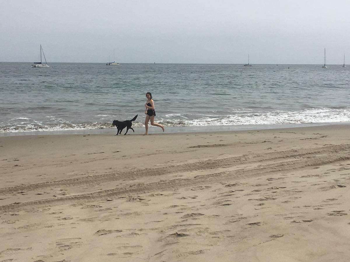 Skye enjoys the beach