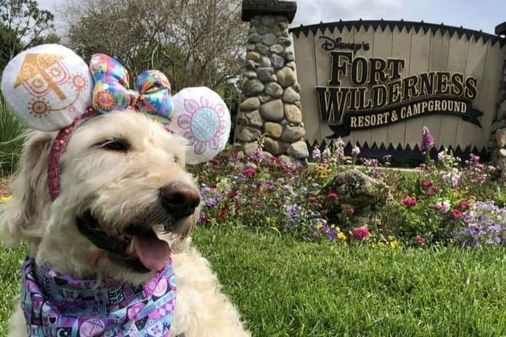 Disney Fort Wilderness dog friendly campground