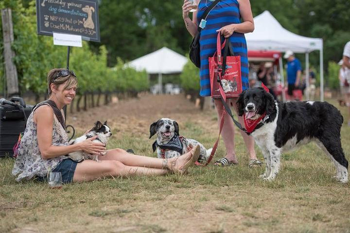 Muddy Paws is a dog-friendly festival for wine-lovers.