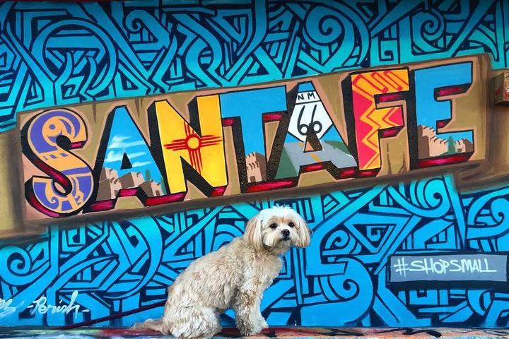 Dog-friendly Santa Fe has plenty for Fido to see and do.