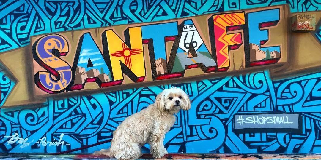A Weekend in Dog-Friendly Santa Fe