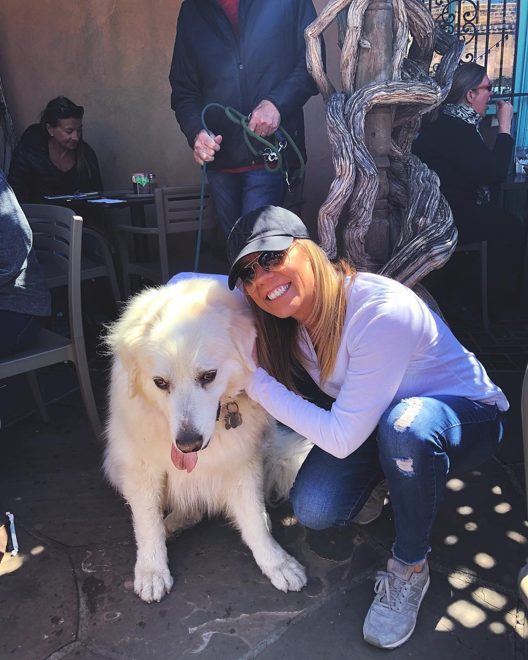 Enjoy New Mexican cuisine with your dog on The Shed's pet-friendly patio.