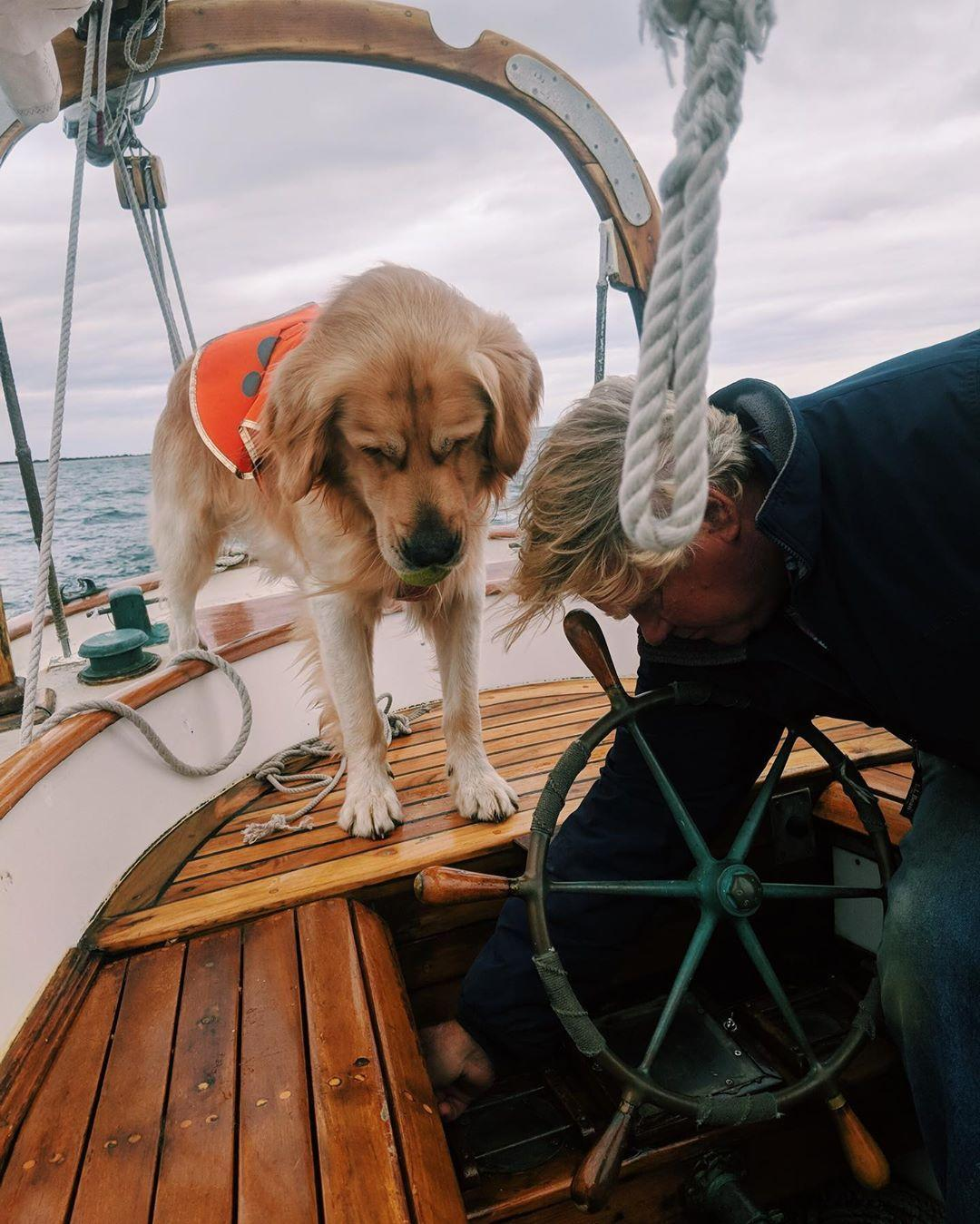Sailing Nantucket Sound with your dog