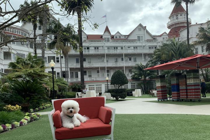 Hotel del Coronado hosts Yappy Hour