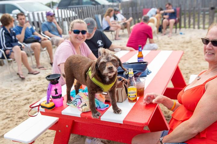 dog-friendly restaurants, hotels and breweries that host yappy hour