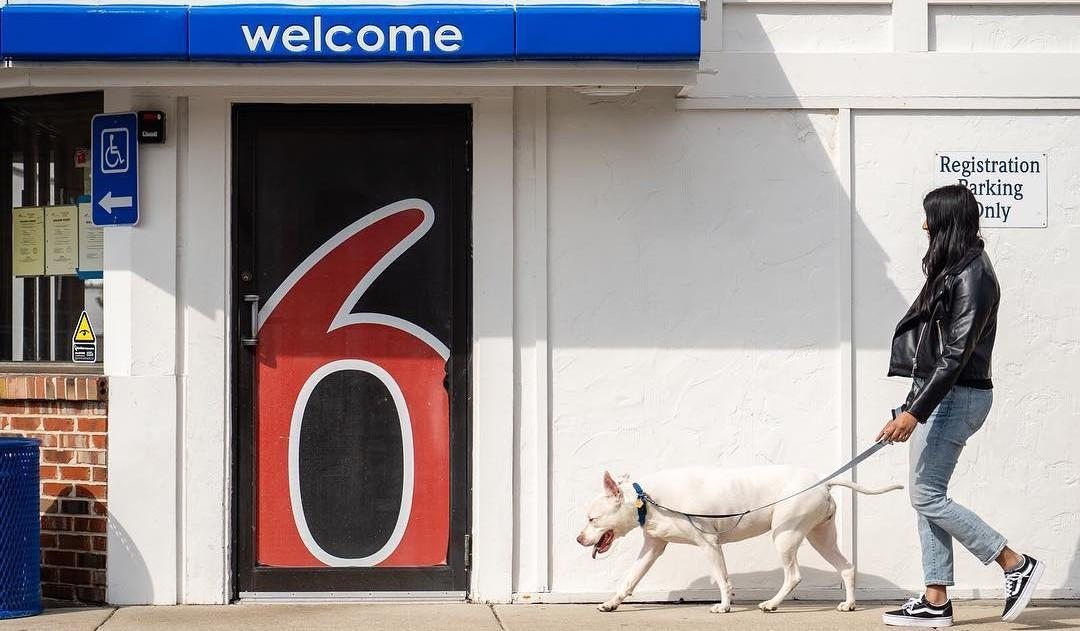 Learn all about the Motel 6 pet policy here.