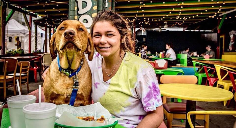 Bring Fido to these 10 iconic dog-friendly hot dog stands.