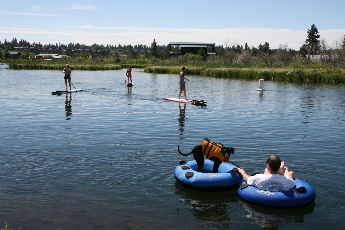 Bring Fido on a dog-friendly tubing trip in Bend, Oregon..