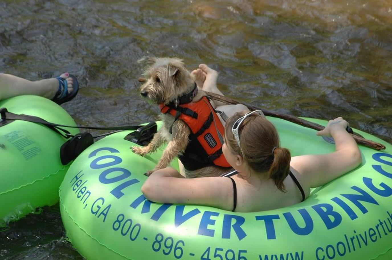8 Great American Tubing Adventures with Fido - Bring Fido