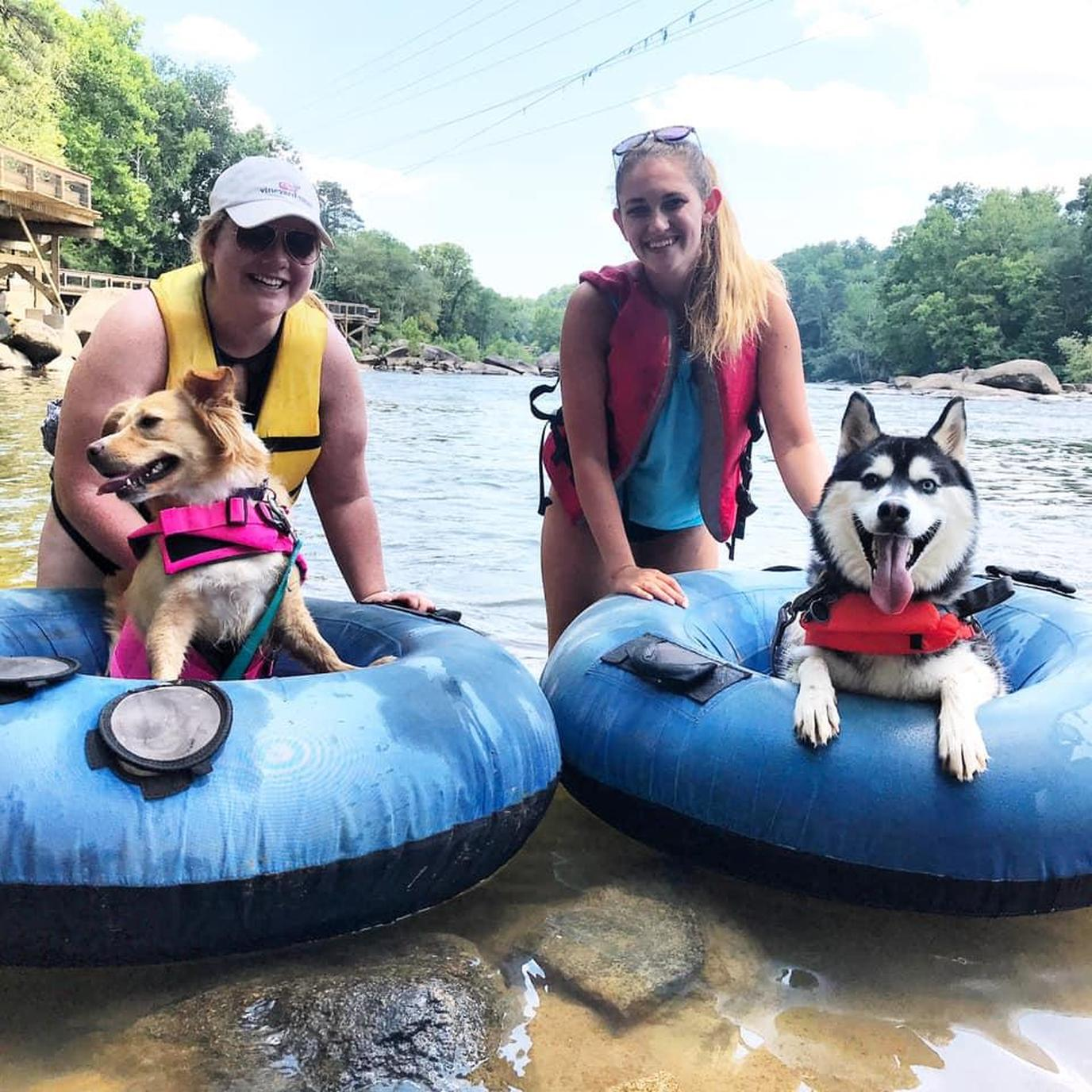 Go pet-friendly tubing on the Congaree River in Columbia with Palmetto Outdoors.