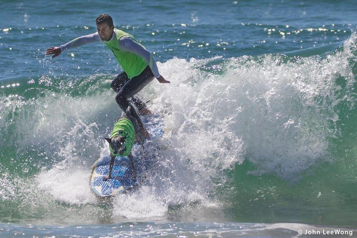 This Huntington Beach dog event allows human and canine surfers to show off surf skills for charity.