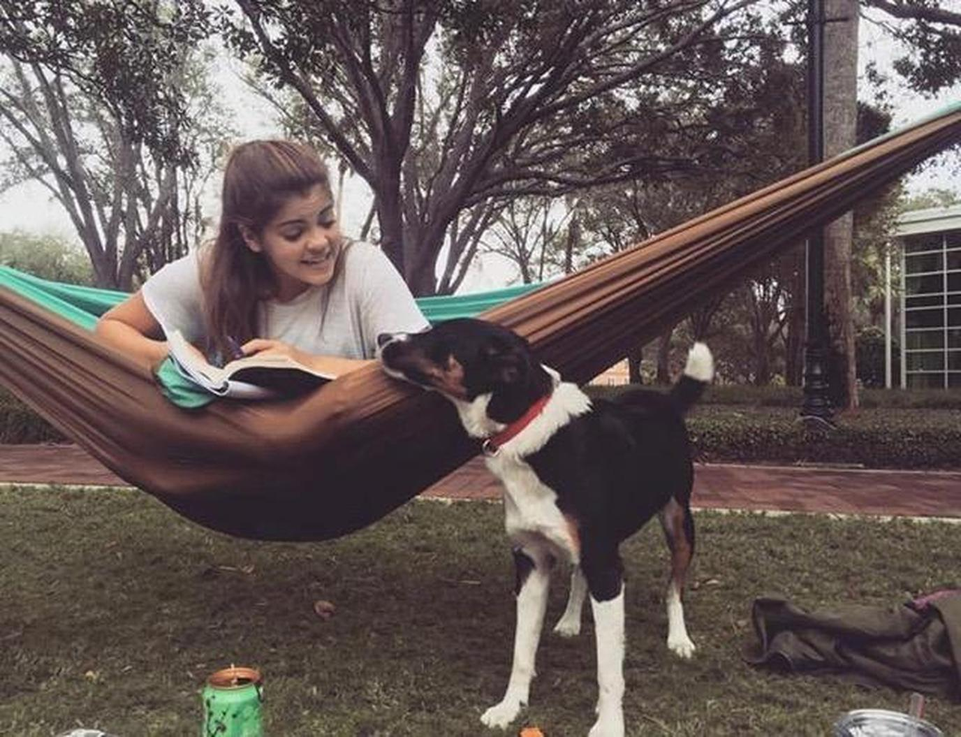 Stetson University is a pet-friendly college that welcomes dogs on campus.