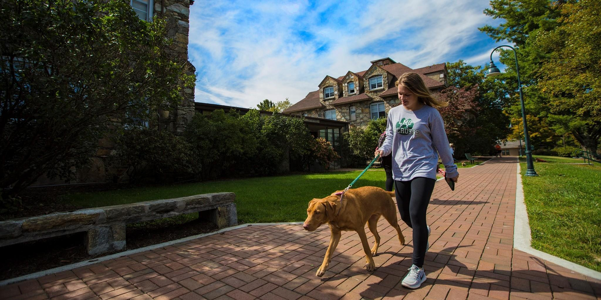 7 Pet-Friendly Colleges that Welcome Dogs in Dorms