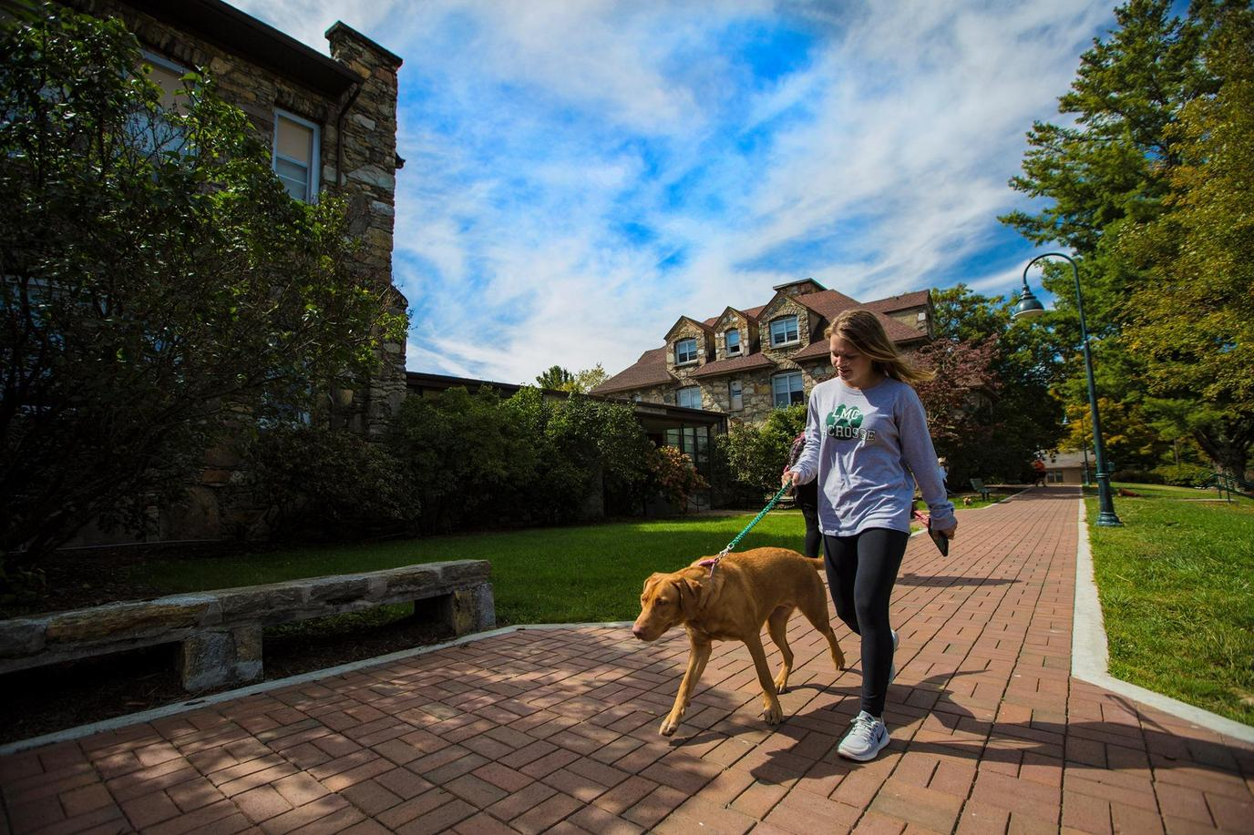 Bring Fido to a pet-friendly college like Lees McRae College.