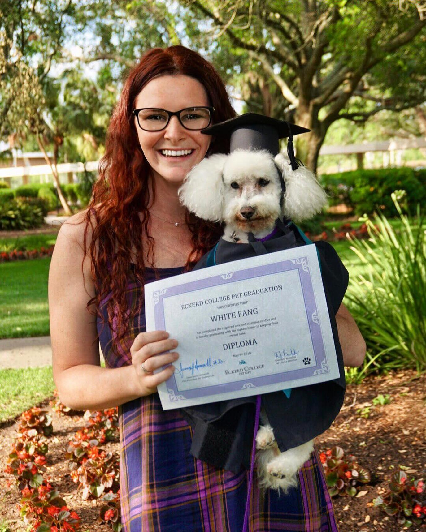 Eckerd College welcomes dogs in dorms and in the classroom.