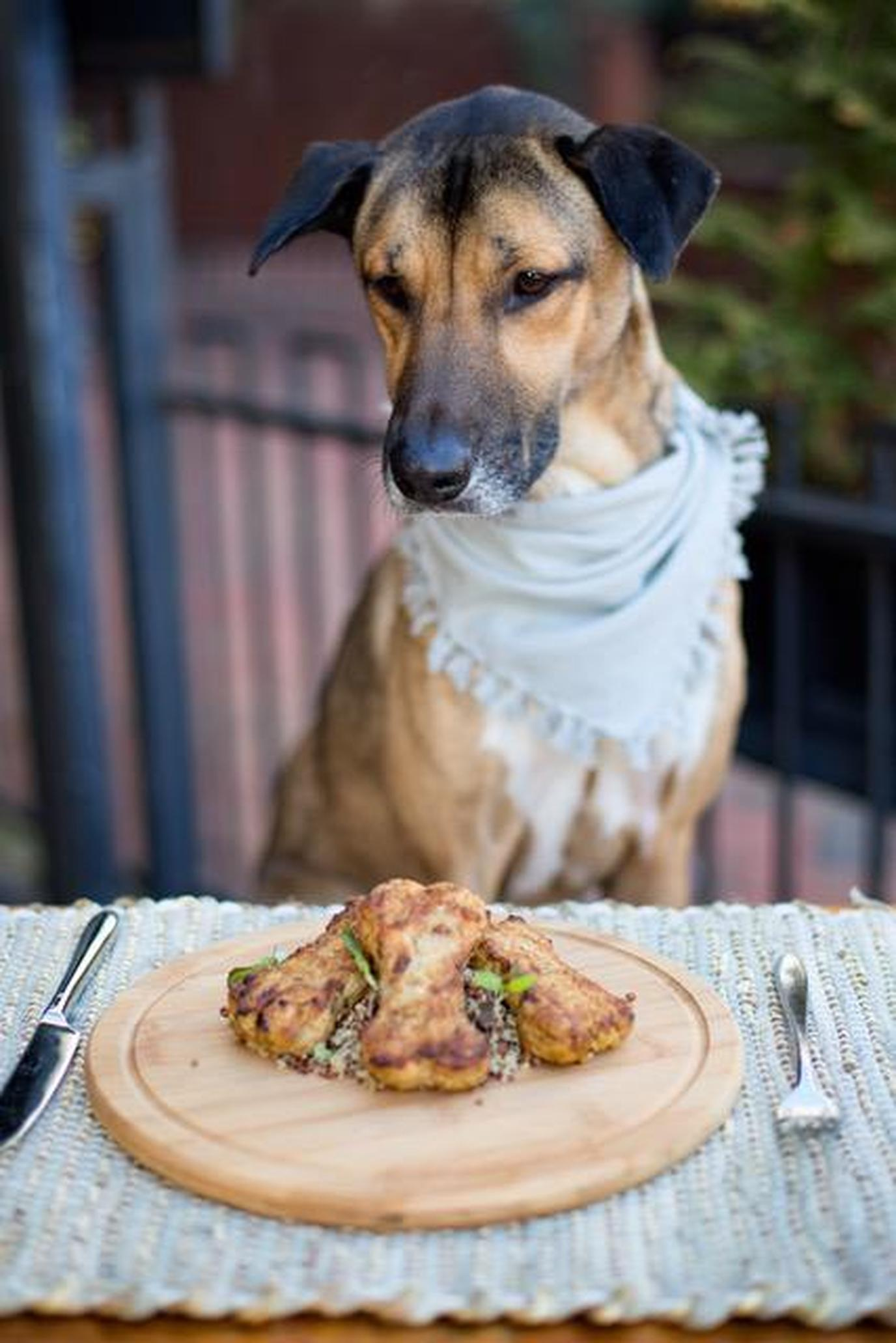 Posana is a fine-dining pet-friendly restaurant in Asheville.