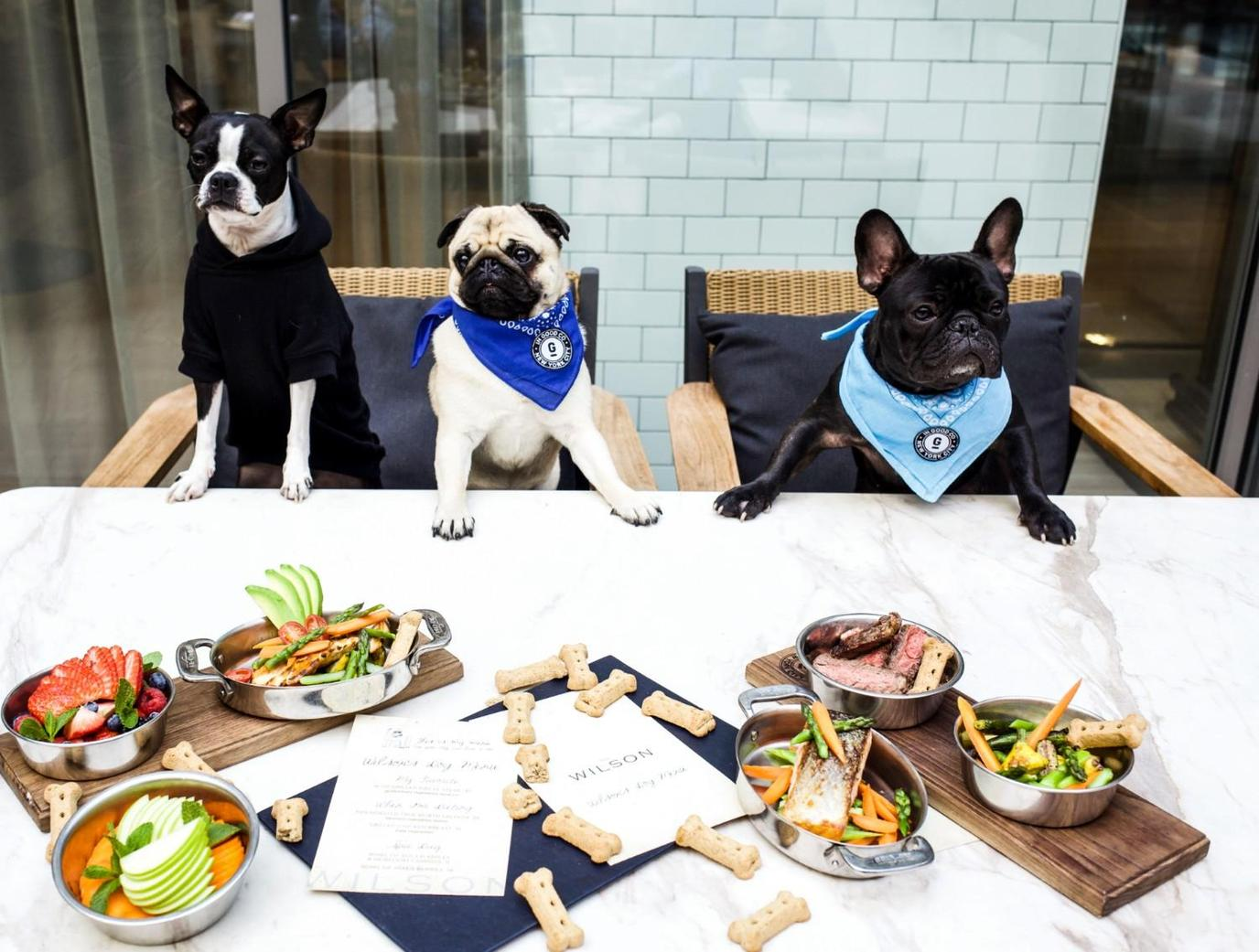 The Wilson is one of New York's most dog-friendly restaurants.