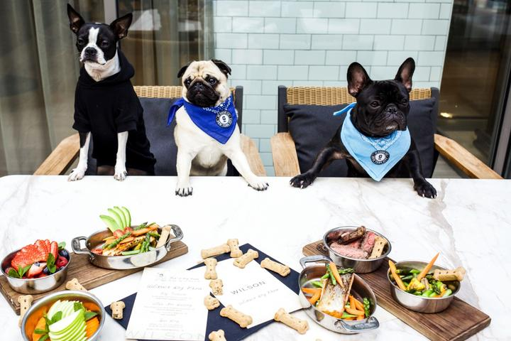 13 Restaurants Around the World With Gourmet Dog Menus
