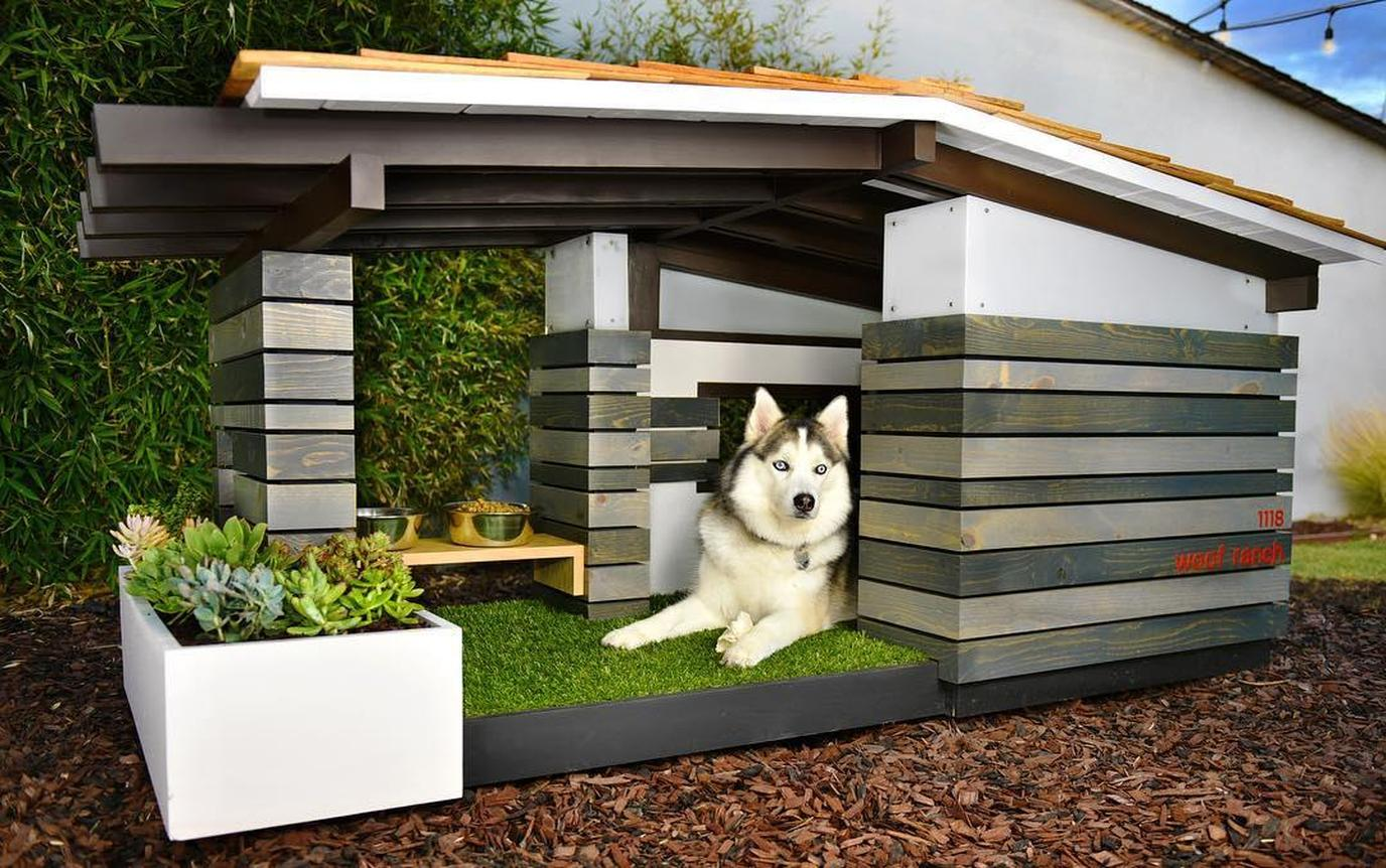 Bid on a luxurious dog house for charity with the Every Dog Is Worth It campaign.