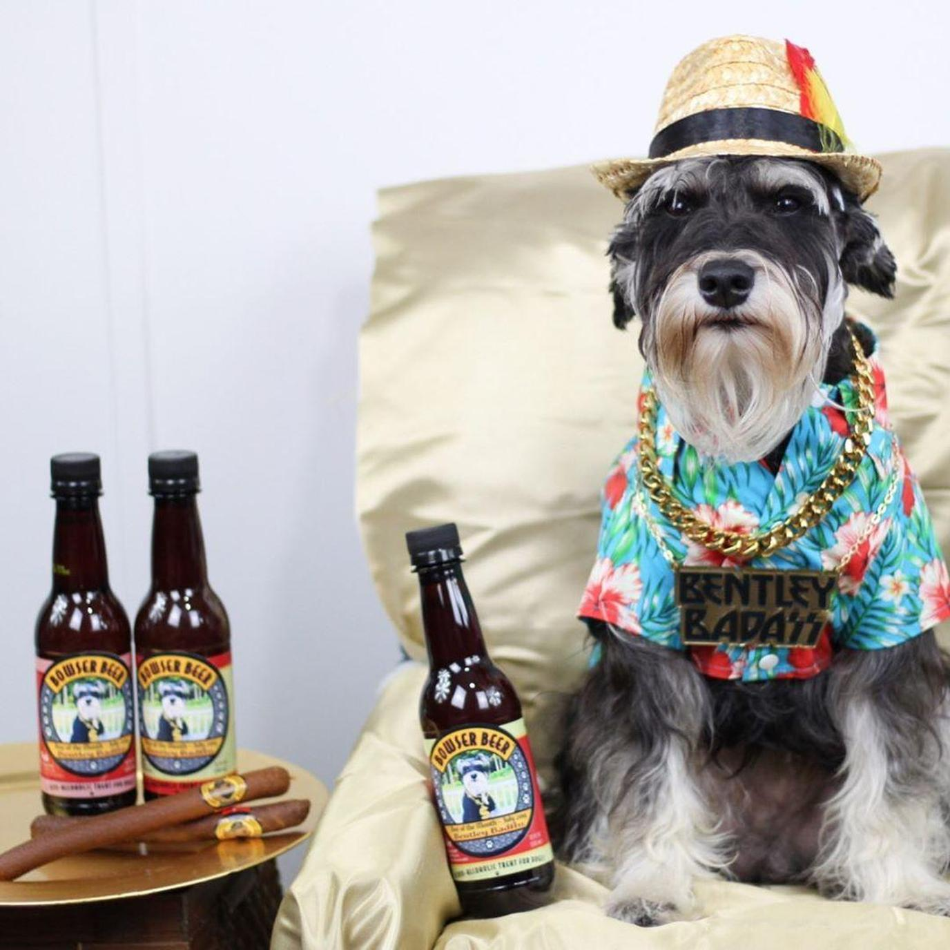 Get your dog a dog beer to celebrate National Dog Day.
