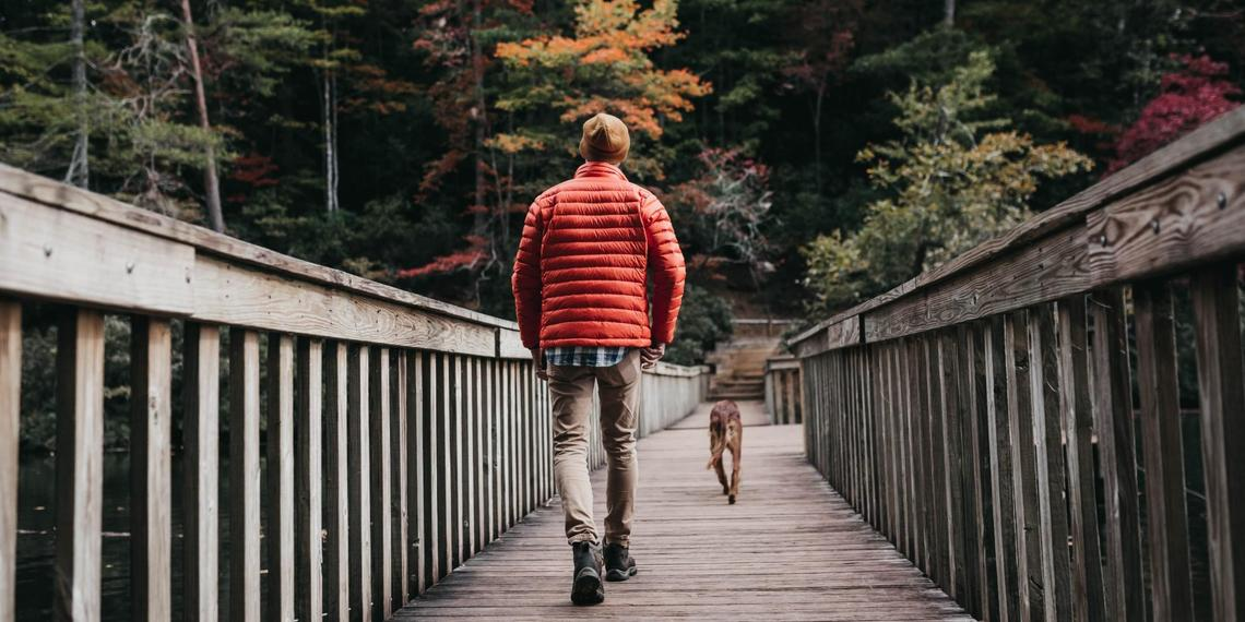 10 Stunning Pet-Friendly Hikes To Experience Fall