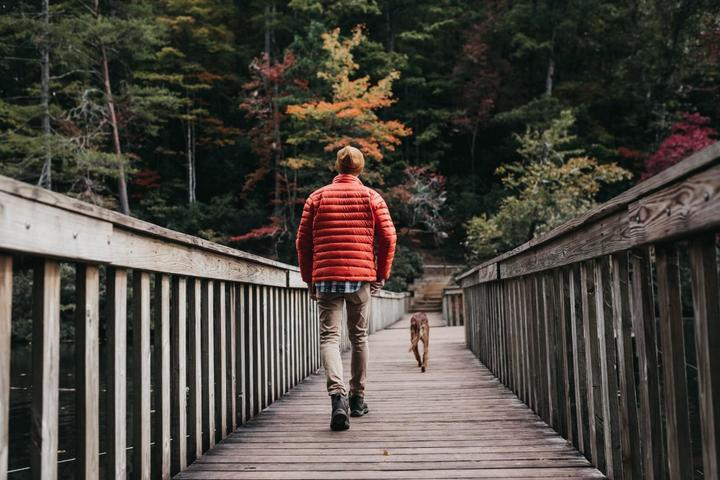 Pet-Friendly Hikes To Take in the Fall.