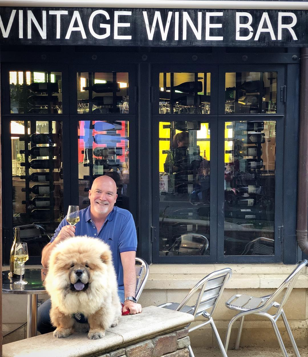 Vintage Wine Bar in San Jose welcomes dogs on the patio.