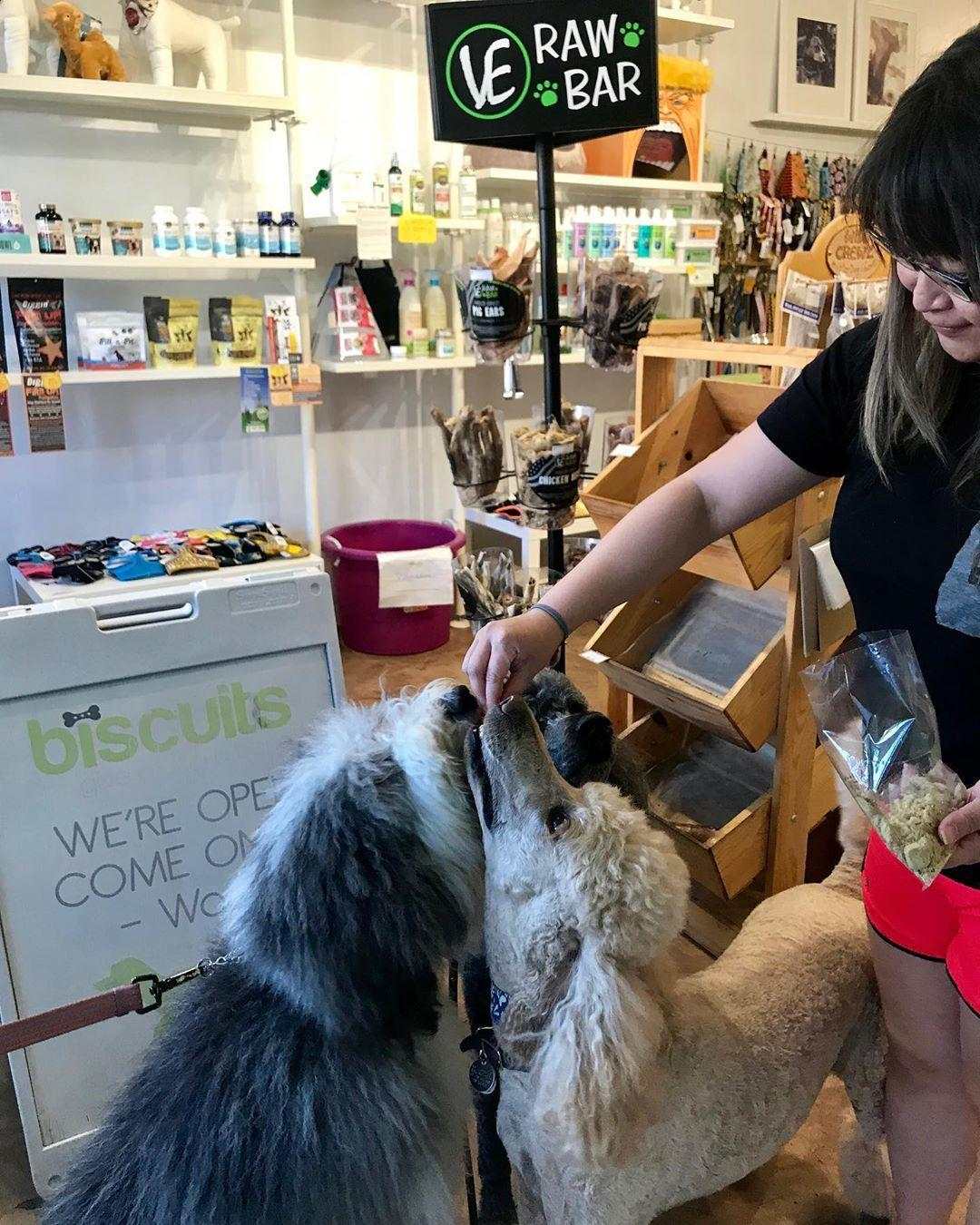 Visit Biscuits - Give a Dog a Bone in San Jose for dog treats, food and toys.